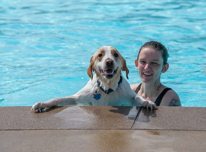 Mary Finley of Westervlle laughs as Lemmy, 2, a Great Pyrenees mix, attempts to pull himself out of the pool during the end-of-summer Doggie Paddle at Highlands Park Aquatic Center in Westerville on Sept. 11.
