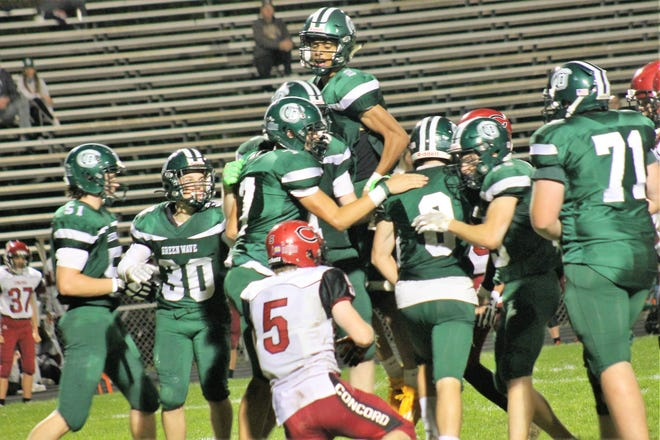 Darian Lopez-Sullivan rises above the crowd as the Dover High football team celebrates a big play during Friday night's win over Concord at Dunaway Field.