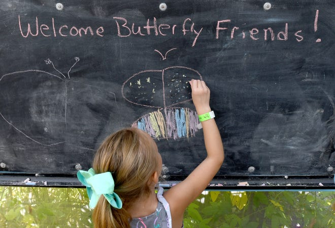 Addison Bair, 5, of Canton draws on a chalk board Saturday, Sept. 18, 2021, at Beech Creek Botanical Garden & Nature Preserve during its annual Butterfly Release Celebration.