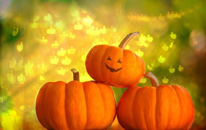 York Parks and Recreation announces their 2021 Pumpkin Hunt