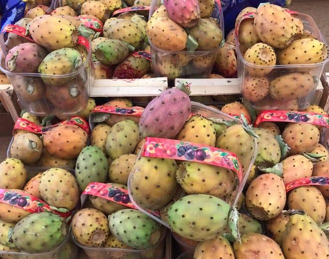Το φραγκόσυκο, i fichi d'india, ένα φυτό που εισήγαγαν οι Ισπανοί στη Σικελία, το απολαμβάνουν και το αγαπούν σε όλο το νησί.
