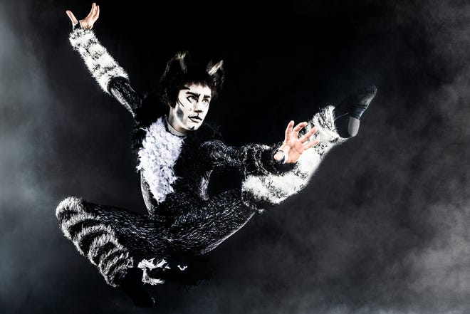 """Single tickets for the American Theatre Guild's 2021-22 season of Broadway shows at the Morris Performing Arts Center go on sale Sept. 21, 2021. """"Cats"""" is the second show of the season, Dec. 2-5, 2021."""