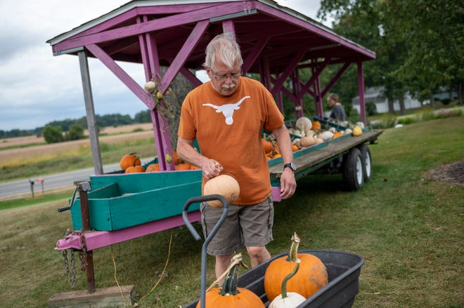 John Hamlin of Marshall picks out pumpkins with his wife Diane Hamlin to decorate their front yard on Monday, Sept. 20, 2021 at Bosserd Family Farm in Marshall, Michigan.
