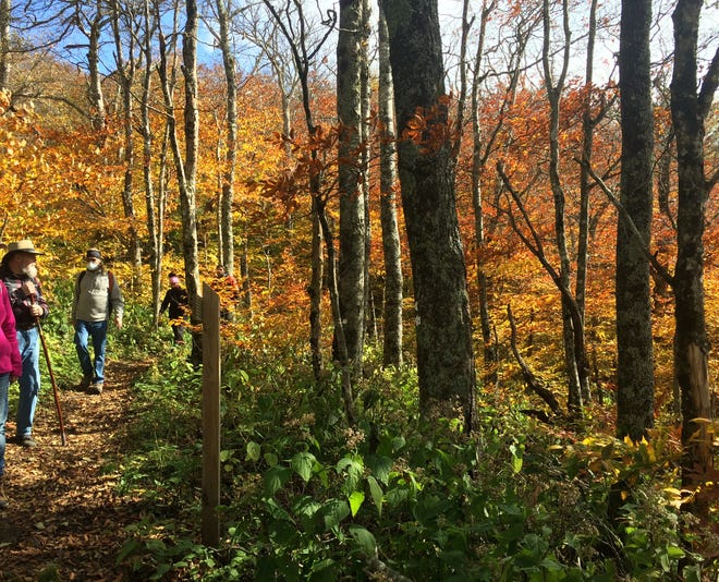 Black Mountain Recreation and Parks offers its annual fall hiking series starting in October.