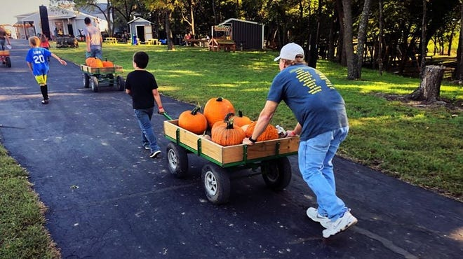 Walters Pumpkin Patch  near Burns is one of the largest patches in the region.