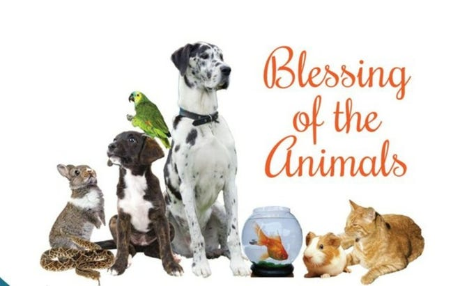 The Blessing of the Animals is scheduled for 3 p.m. Oct. 3 at St. Andrew's By-the-Sea Episcopal Church in Destin.