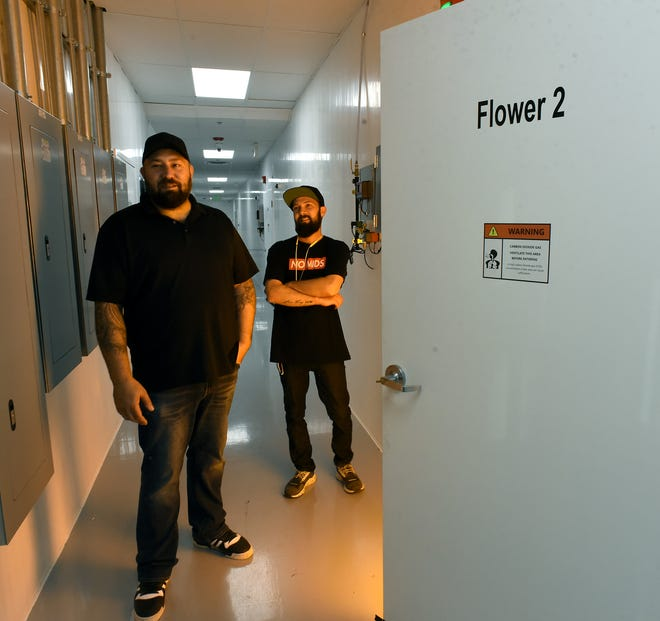 Owners Mike Dabs and Joshua U'Ran are illuminated by the glow of lights in a flower room at Michigan Grown Gardens, a cannabis cultivation business in Monroe Charter Township. The business is the first such enterprise in the township.