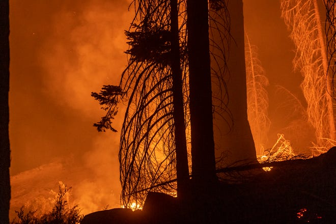 Hot spots from the Windy Fire near the Trail of 100 Giants on Monday, September 20, 2021.