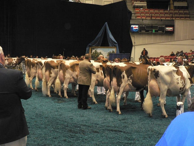 The commercial exhibits draw the crowd, the cattle shows draws the publicity and attention.