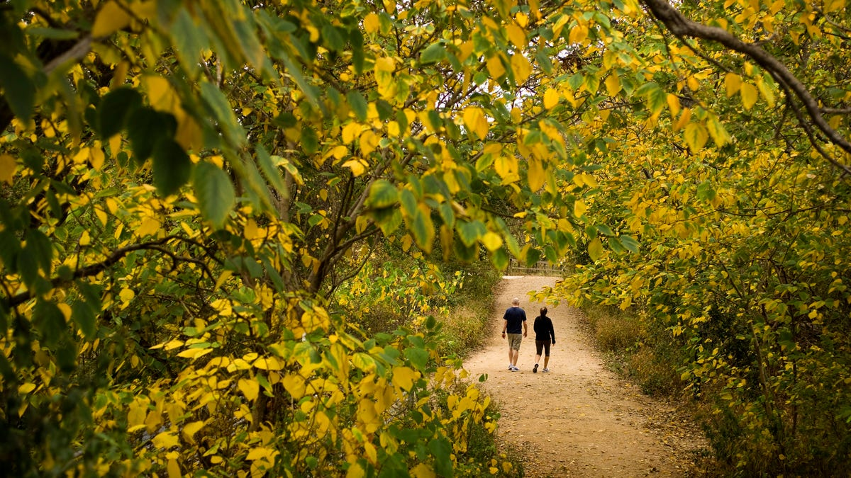 Take a hike. No, really. 10 of Austin's best hiking trails to take in the beauty of the Hill Country.