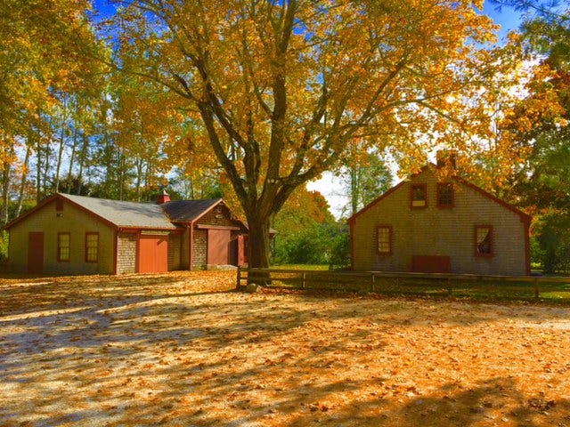 Autumn foliage sets off the campus of the Historical Society of Santuit & Cotuit. The left end of the barn (at left in photo) will be demolished and replaced with a new two-story structure that will greatly expand the museum space. At right is the 1808 Dottridge Homestead.