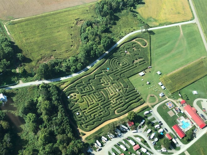 The five acre corn maze at Coshocton KOA Campground will feature a new fall festival with a variety of entertainment and food options.