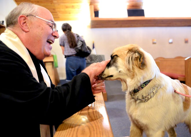 Norah the dog is blessed during a 2016 service to bless pets at Church of the Good Shepherd in Edmond.