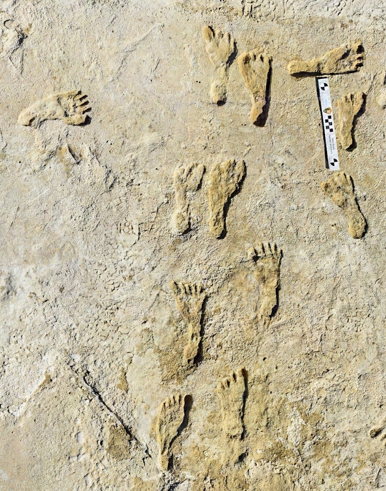 Incredible:  Oldest known human footprints in North America discovered at national park