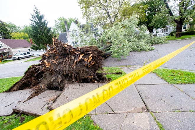 A tree blocks the intersection of 15th and Francis streets in Port Huron after strong winds hit the area Wednesday.