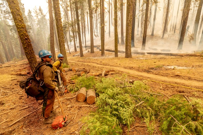 Firefighters watch a prescribed burn in Sequoia National Park on Wednesday, September 22, 2021.