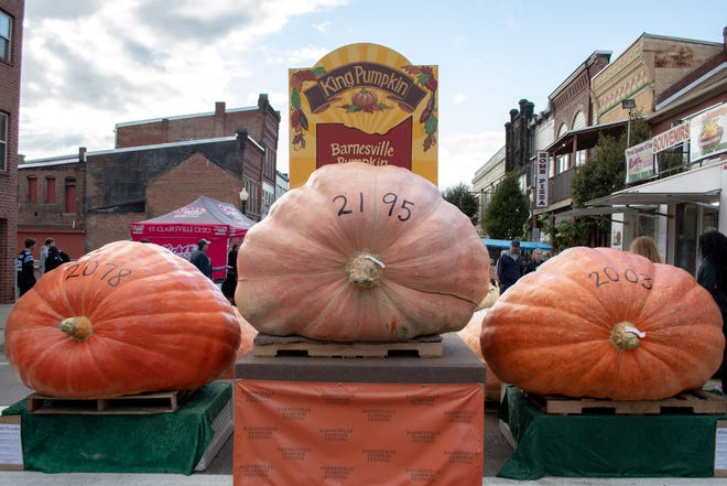 The top three pumpkins from the 2021 festival weighing a total of 6,276 pounds. The King Pumpkin weighed in at 2,195 pounds and was grown by Jeff Theil.