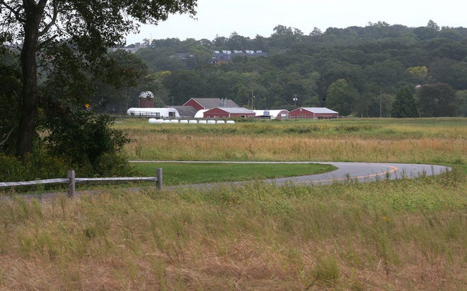 """The hayfield for URI's Peckham Farm is the proposed site of a new large-scale hydroponic greenhouse and """"agricultural innovation center."""" The hayfield would be relocated to land now leased by Kingston Turf Farms."""