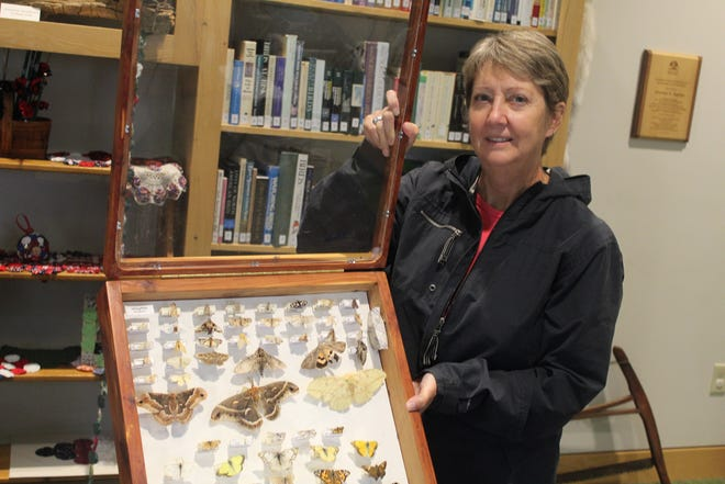 Melissa Depinet has served as a volunteer butterfly monitor at Sandsuky County Park District's Creek Bend Farm monitoring station. She records her observations of butterflies along a roughly half-mile route at Creek Bend once a week from April through October.