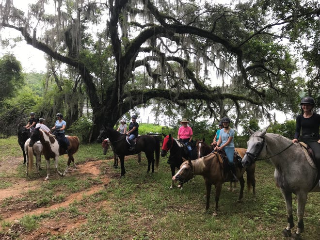 The Southern Trailriders Association, a group of horse lovers who have helped develop and maintain many trails in the parks in Tallahassee and Leon County,is celebrating its 30th anniversary.