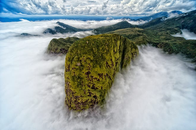 Nature Conservancy 2021 photo contest winners show off the best of Earth