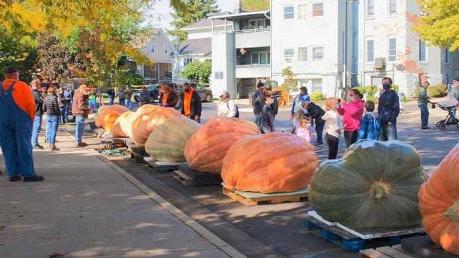 Huge pumpkins are displayed during the 2020 Pumpkin Palooza Giant Pumpkin Weigh-off in Dundee. This year's weigh-off is Oct. 2.