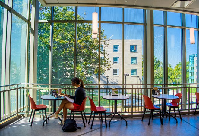 Freshman Ava Beck sits at one of the more scenic tables as she does work and eats lunch Tuesday in the food court at McNutt Residence Center on the Indiana University campus.