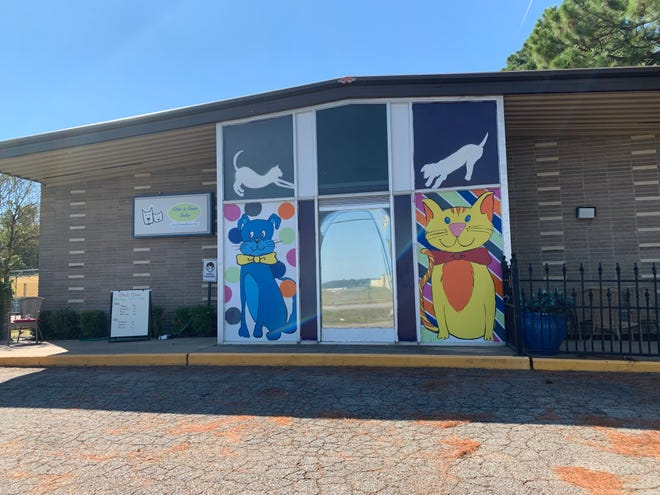 The Kitties and Kanines Shelter opened its doors in Sept. 2019. As the shelter celebrates two years of service to the community, its contract with the city is up for renewal.