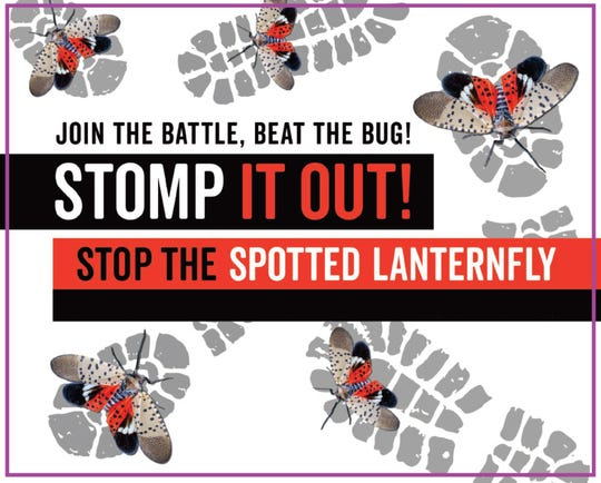 New Jersey officials launched a campaign this year urging residents to squash the invasive spotted lanternfly to limit damage to the state's trees, plants and crops.