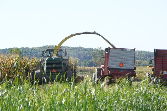 Volunteers help harvest corn silage at the Henschel family farm (Deer-Vue Acres) in Elkhart Lake on Tuesday, Sept. 28, 2021.