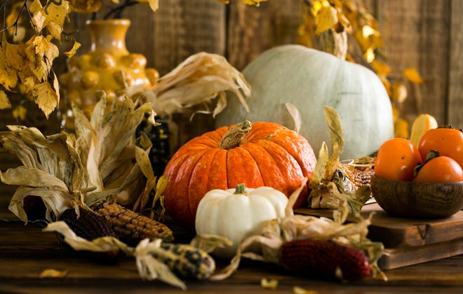 The Harvest Fest will be Oct. 3 at Anna's Slayter Park.