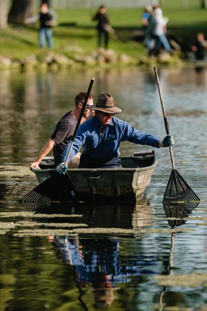 Buckeye Career Center Natural Resources teacher John Oliver, in bow of boat, works in tandem with Alec Hillyer to remove algae from the pond at Tuscora Park, Wednesday, September 29 in New Philadelphia.