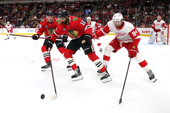 Jujhar Khaira #16 of the Chicago Blackhawks works for a loose puck against Alex Cotton #84 of the Detroit Red Wings during the second period of a preseason game at the United Center on September 29, 2021 in Chicago, Illinois.