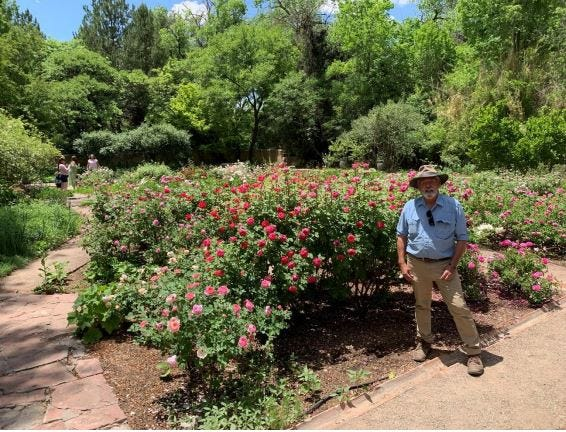 Pecan shell mulch covers the rose gardens at Los Poblanos Historic Inn & Organic Farm in Albuquerque. Director of Horticulture Wes Brittenham looks on.