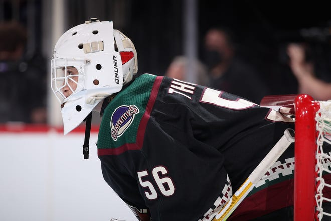 =Goaltender Anson Thornton #56 of the Arizona Coyotes looks down ice during the third period of the preseason NHL game against the Los Angeles Kings at Gila River Arena on September 27, 2021 in Glendale, Arizona.  The Coyotes defeated the Kings 2-1. =