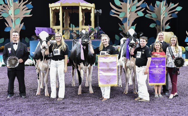 The Intermediate Champion, Hobby-Hill Denver Elizabeth, topped the Junior Two-Year-Old Cow Class and was Champion Bred and Owned of the Junior Show. Elizabeth is owned by Gracin and Chesney Speich of Orfordville, Wis.