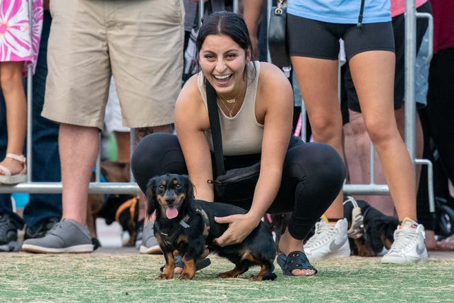 Raya Al-Turk of Port St. Lucie waits with her dog, Rio, before the wiener dog races at the City of Port St. Lucie's annual Oktoberfest celebration on Saturday, Oct. 2, 2021, at the MIDFLORIDA Credit Union Event Center in Port St. Lucie.