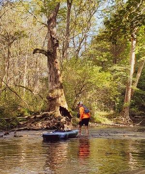 Curtis drags his kayak through shallows.