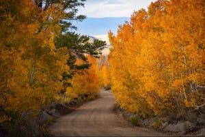 Lobdell Lake Road in the Eastern Sierra, photo