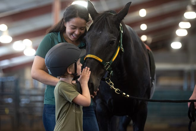 Bison Strides was founded in 2017 and partners horses and humans to benefit mind, body and spirit.