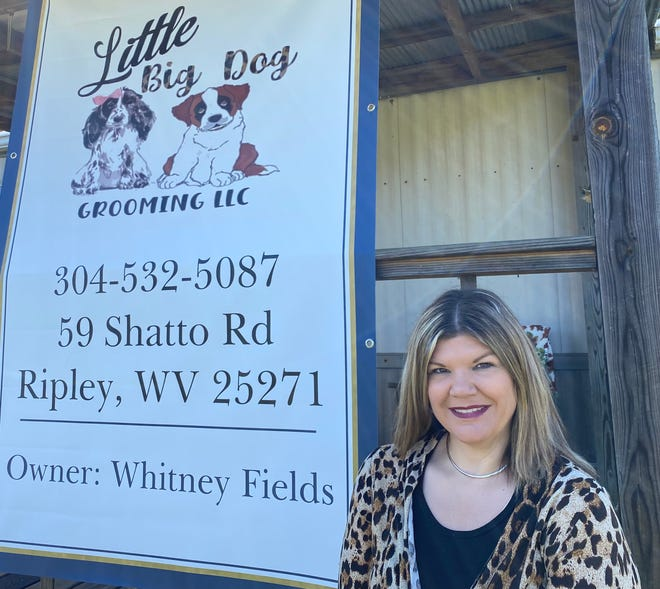 Whitney Fields, owner of Little Big Dog Grooming, opened shop Oct. 11.