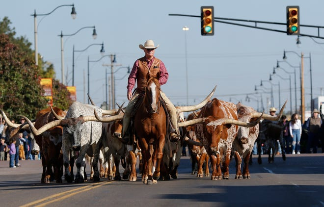 The Stockyards Stampede parade will begin at 10 a.m. Oct. 16 at the Oklahoma National Stockyards archway on Exchange Avenue. Shown are longhorn walking south on Agnew during a previous year's Stockyards Stampede.