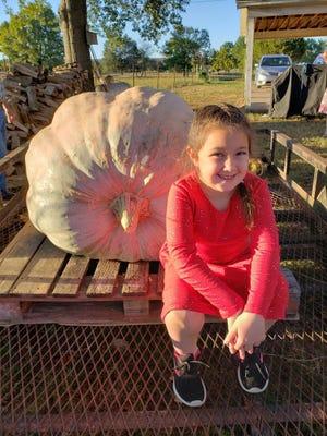 Molly Larue displayed a 566 pound pumpkin at the Arkansas-Oklahoma State Fair.