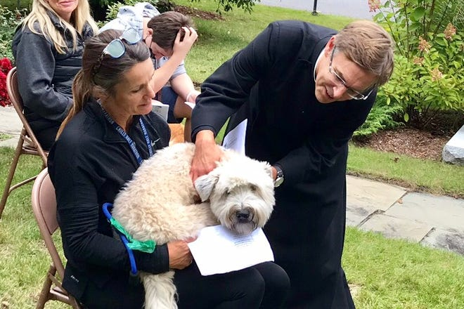 """Snuggled on his """"mom"""" Kristin's lap, Deuce Donahue was blessed by Rev. Adrian Robbins-Cole (whose own two young dogs were """"too naughty"""" to take part in the service)."""