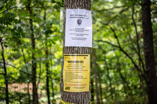 Several trails at the Folk Art Center are closed following a recent bear attack.