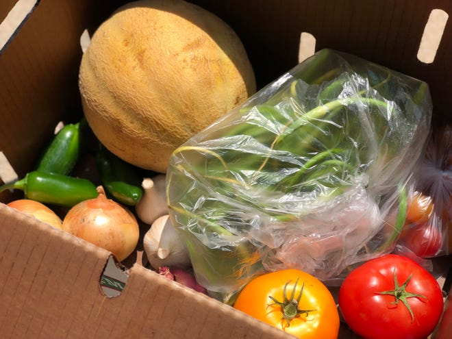 A box of locally grown produce from Ledgeview Gardens.