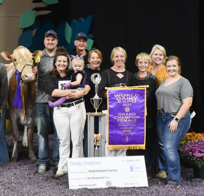 The second time's a charm for Valley Gem Atlas Malt of Valley Gem Farms of Cumberland, Wis., who won Grand Champion Female and Best Bred and Owned of the International Guernsey Show at World Dairy Expo.