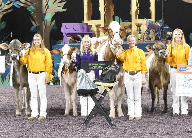 Scenic-Edge Jordan-Red, exhibited by Jacey and Hadley Ross of Delavan, Wisconsin was crowned Supreme Champion of the Junior Show at World Dairy Expo 2021, Supreme Champion Heifer of the Junior Show was Dorloy-K Guinness-Red-ET. Reserve Supreme Champion of the Junior Show honors were awarded to Homeridge T Annette, owned by K&D Nickels, T Freson, M Sell and S Stanford of Watertown, Wis. Reserve Supreme Champion Heifer of the Junior Show was Brown Swiss Pit-Crew Formula Tawny.