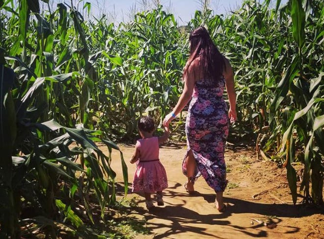 There are several corn mazes to enjoy in Santa Rosa County this season.