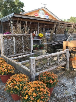 Greasy Cove General Store is located at 13956 Gallant Road. The store features grocery items, produce, flowers, pumpkins, gourds, artwork and craft items, pottery and The Greasy Spoon serving lunch.